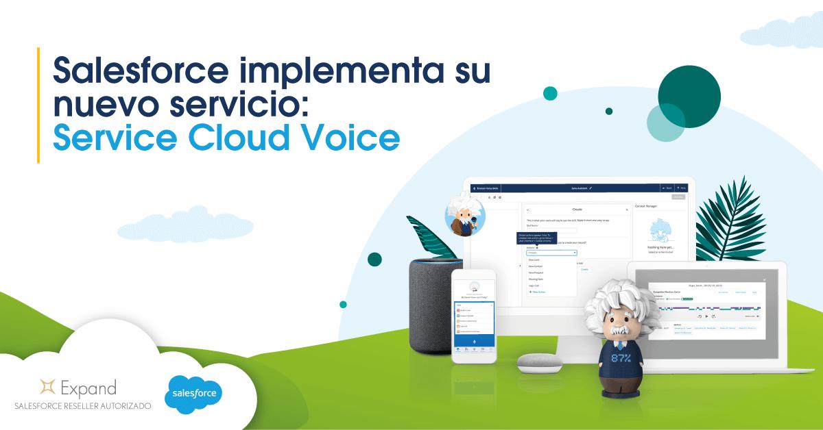 Service Cloud Voice